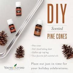 DIY Pine Cones