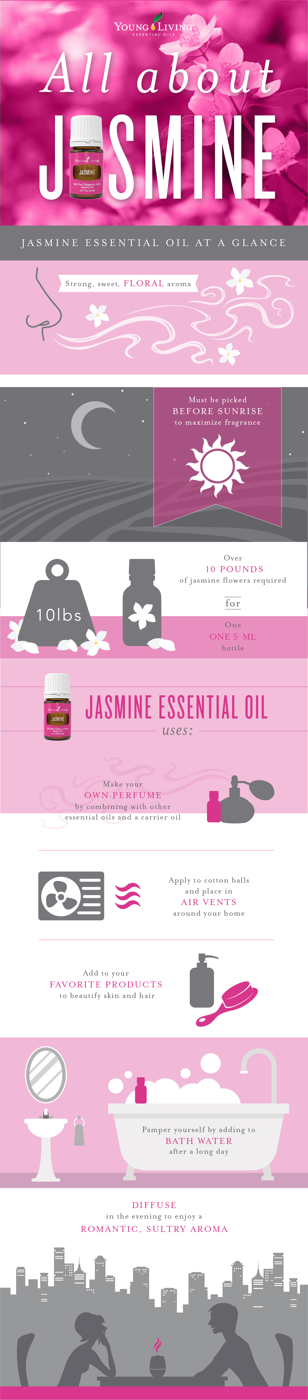 All About Jasmine Infographic