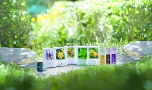 The New Essential Oil Sample Pack - Young Living Essential Oils by ...