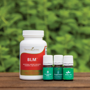 August Promo - BLM, Eucalyptus Blue, Peppermint, and White Fir